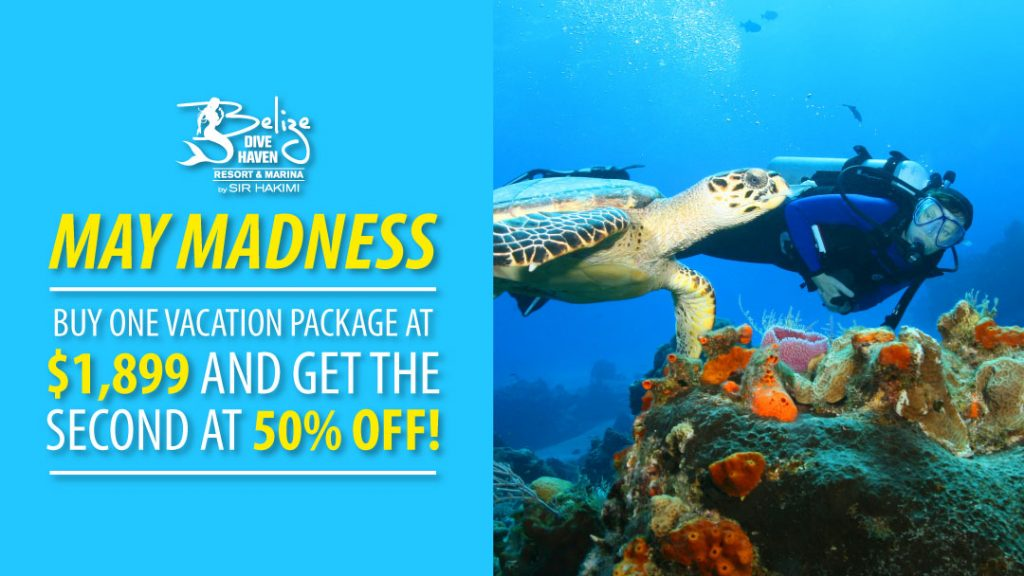 May Madness Sale - BOGO at 50% off
