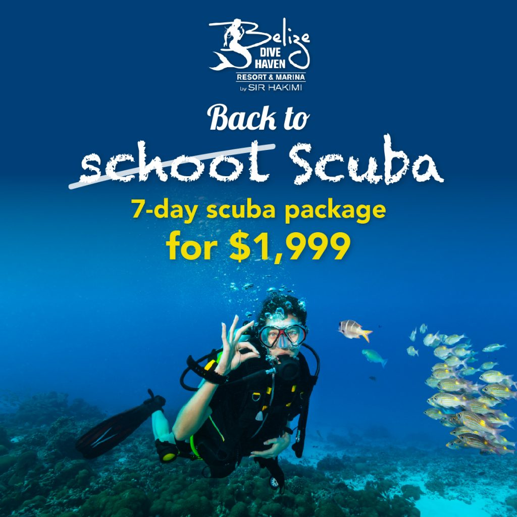 Back to Scuba - 7-day Scuba Package for $1,999