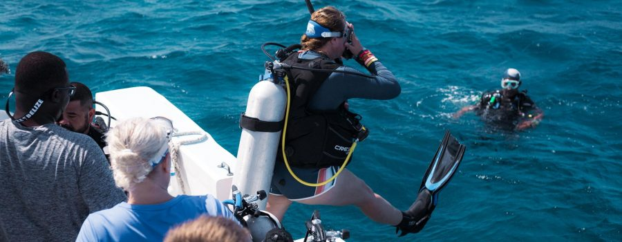 Fall Diving Belize